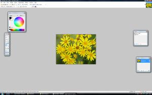 Icon maken in Paint.net Voorbeeld