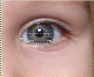 ogenkleurveranderen2